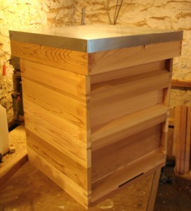 first hive in western red cedar