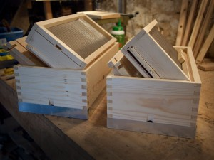 A Couple of Flat Peak Nucleus Hives
