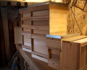 14x12 Hives and Ekes