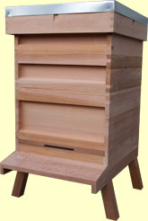 national hive in western red cedar