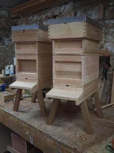 Two Nucleus Hives