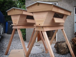 Top Bar Hives in Cedar